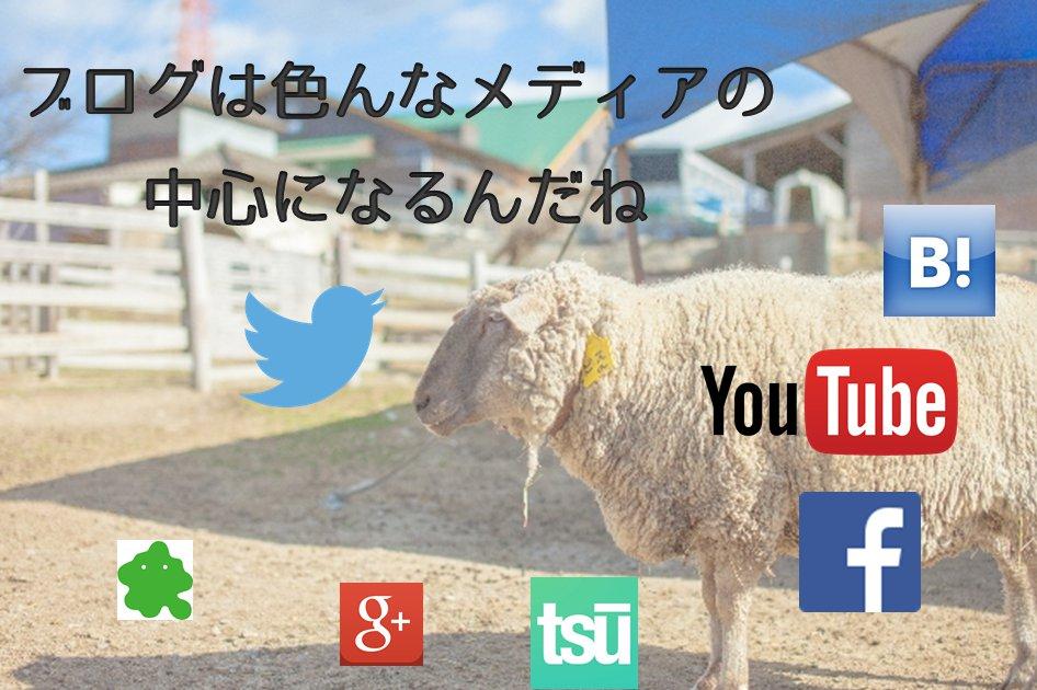 ブログmedia