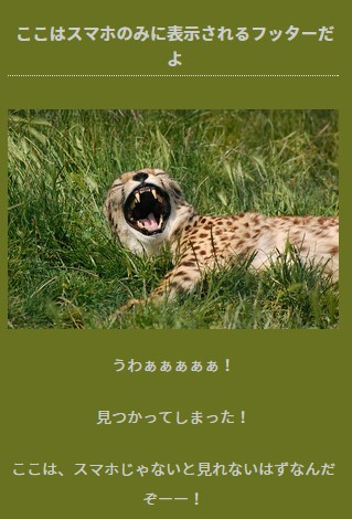 Stinger5-cheetahフッタースマホ