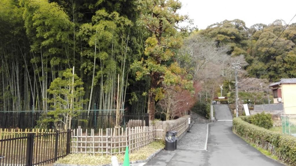 鈴虫寺への道1