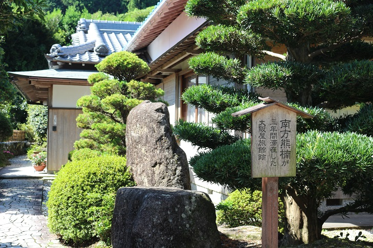 熊野古道7