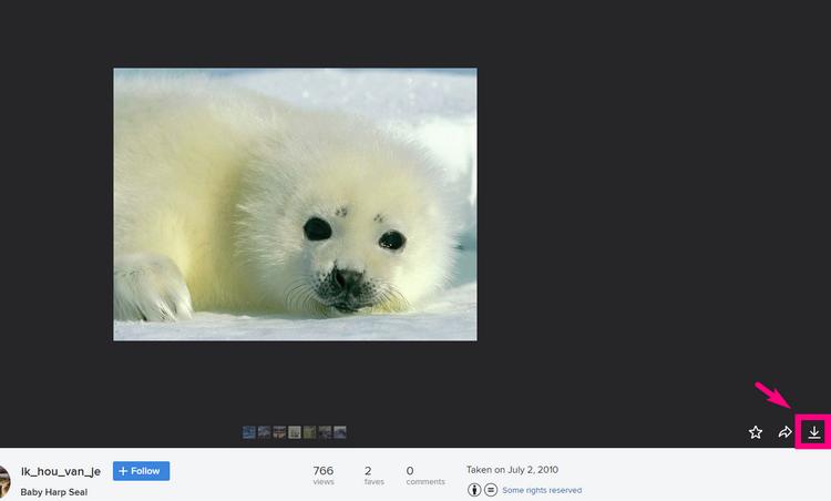 FlickrでCCライセンスの画像を見つける7
