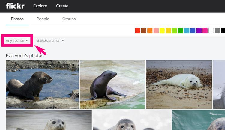 FlickrでCCライセンスの画像を見つける5