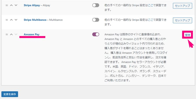 Amazon Pay3
